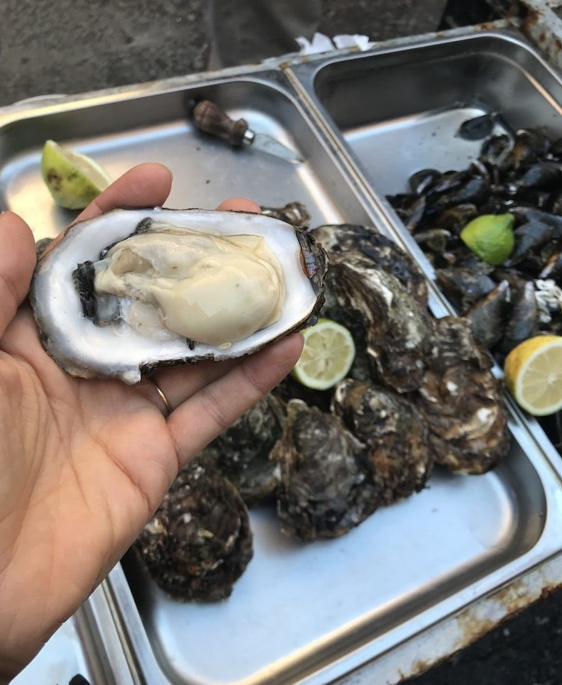 Oysters at Catanias fish market