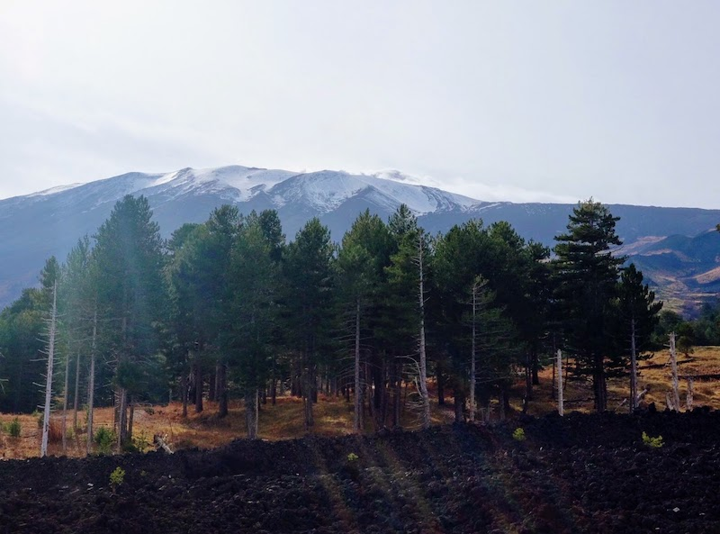 On the road to Etna