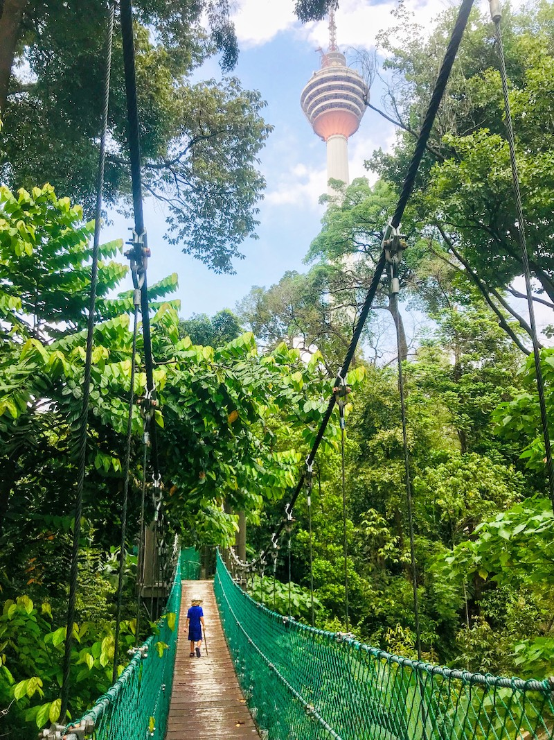 Canopy walk in KL Forest ECO Park