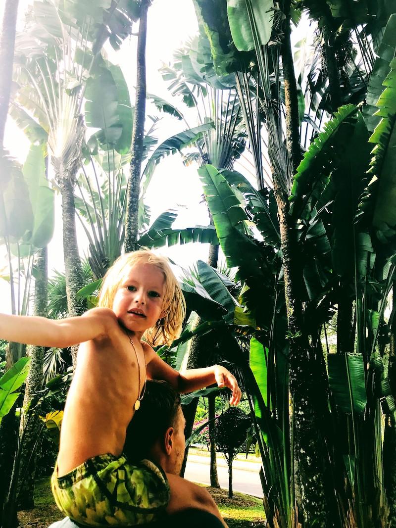 kid palmtrees